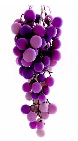 grape-anti-oxidant